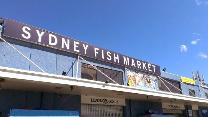 fresh seafood dishes in Sydney