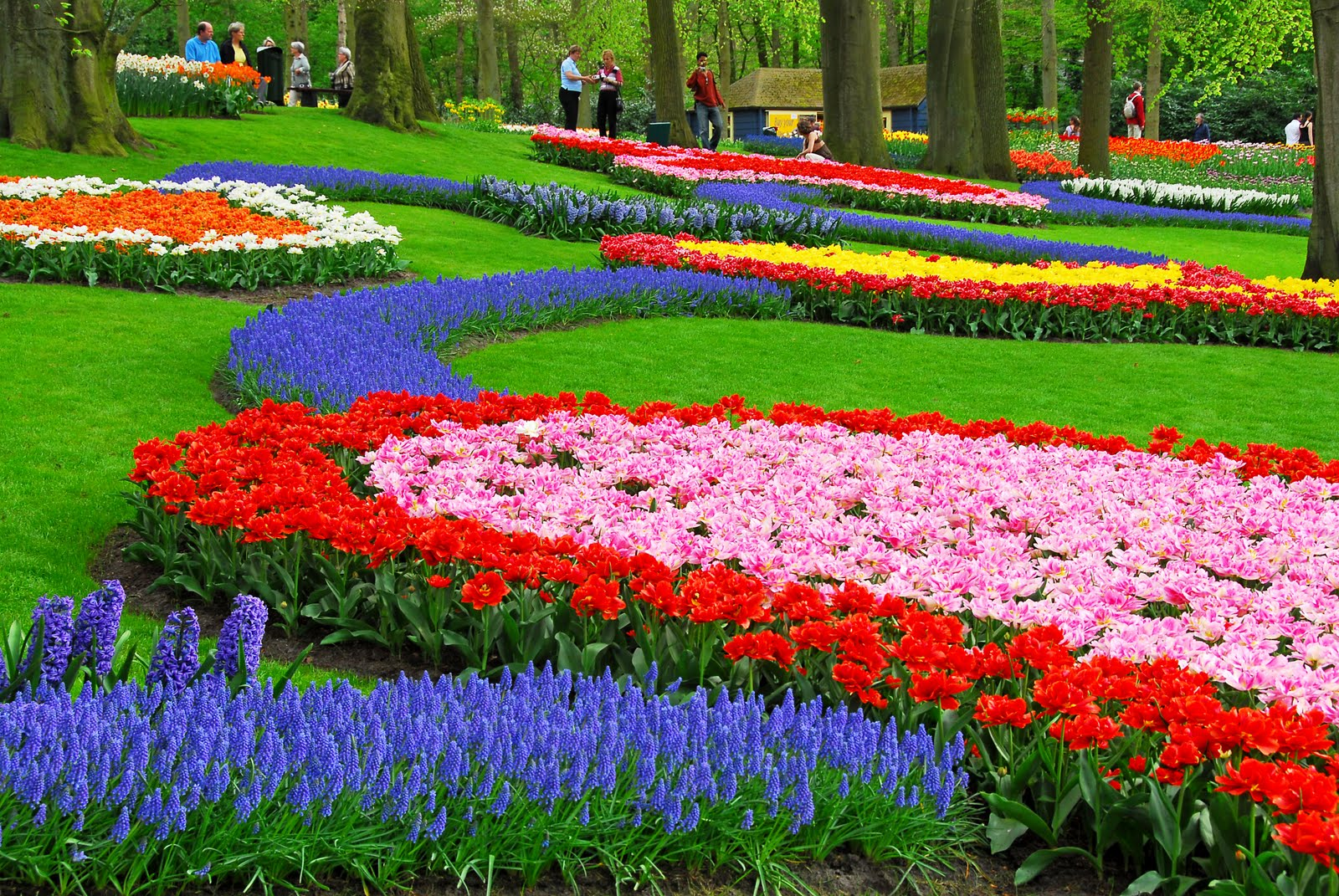 world's largest flower garden