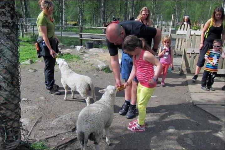 Dyreparken Zoo
